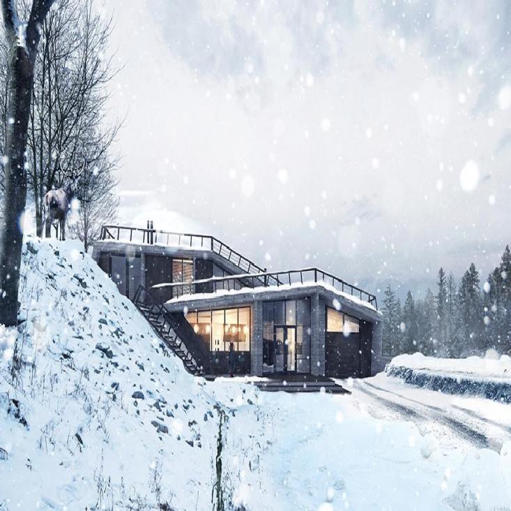 Индивидуальный жилой дом в городе Миасс Челябинской области